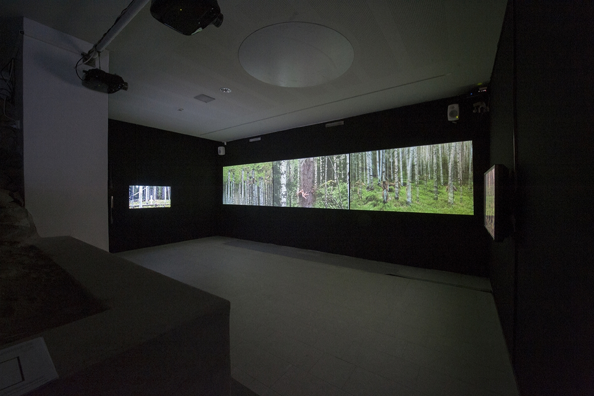 Video installations from