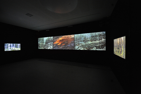 Video Installation & Photographic Works